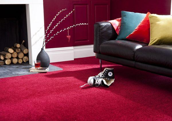 Apollo Collection Carpet Belfast