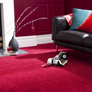 Apollo Collection Carpet Belfast